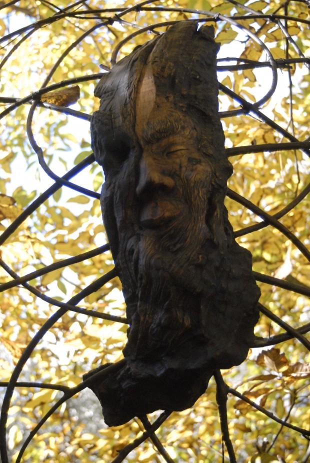 Der Geist in den Bäumen